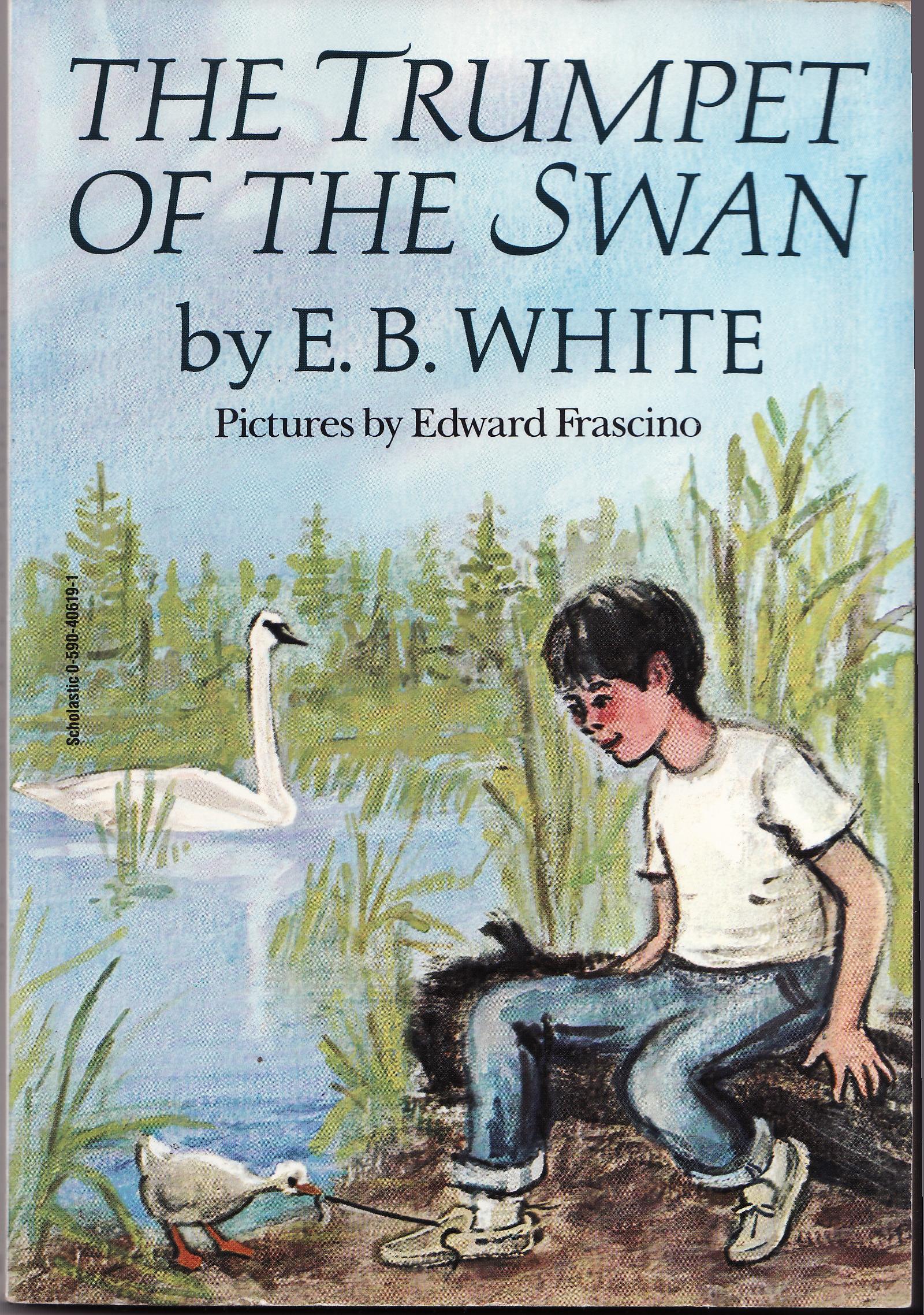 the swan roald dahl essay